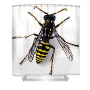 Yellow Jacket Shower Curtain by Steve Benton