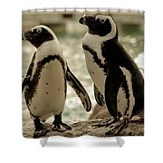 You Go First Shower Curtain by Trish Tritz