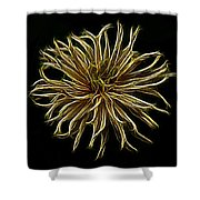Zinnia  Shower Curtain by Sandy Keeton