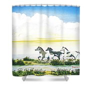Indian Ponies Shower Curtain by Jerome Stumphauzer