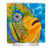 Spotted Angelfish Shower Curtain by Daniel Jean-Baptiste