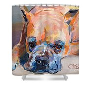 Andre Shower Curtain by Kimberly Santini
