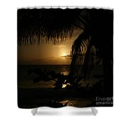 Dancing In The Wind Shower Curtain by Sharon Mau