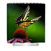 Dining Alone Shower Curtain by Lois Bryan