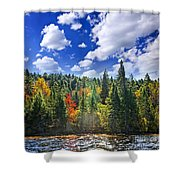 Fall Forest In Sunshine Shower Curtain by Elena Elisseeva