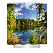Forest And Sky Reflecting In Lake Shower Curtain by Elena Elisseeva