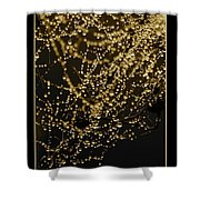 Let Your Light Shine  Shower Curtain by Carol Groenen