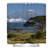 Mount Kilimanjaro Shower Curtain by Michele Burgess
