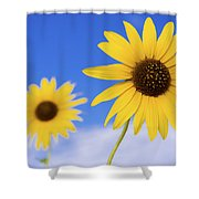 Sunshine Shower Curtain by Chad Dutson