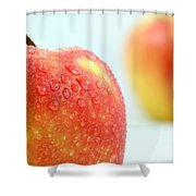 Two red gala apples Shower Curtain by Paul Ge