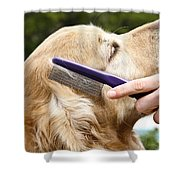 Dog Grooming Shower Curtain by Photo Researchers Inc