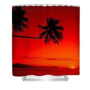 Fiji, Kadavu Island Shower Curtain by Ron Dahlquist - Printscapes