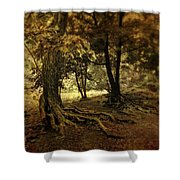 Rooted In Nature Shower Curtain by Jessica Jenney