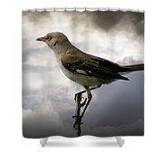 Mockingbird Shower Curtain by Brian Wallace