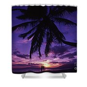 Palm Over The Beach Shower Curtain by Ron Dahlquist - Printscapes