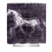 Horse Shower Curtain by Julie Niemela