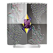 4 Points Of Interest Shower Curtain by Brenda L Spencer