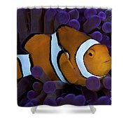 False Ocellaris Clownfish In Its Host Shower Curtain by Terry Moore