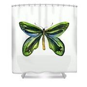 6 Queen Alexandra Butterfly Shower Curtain by Amy Kirkpatrick