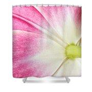 Tulip Shower Curtain by Mark Johnson