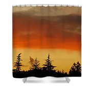 A Distant Rain Shower Curtain by CML Brown