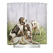 A Group Of French Hounds Shower Curtain by Charles Oliver de Penne