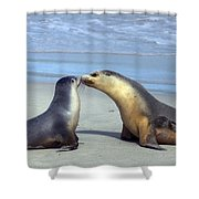 A Mothers Love Shower Curtain by Mike  Dawson