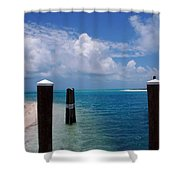 A Perfect Day Shower Curtain by Susanne Van Hulst