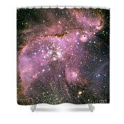 A Star-forming Region In The Small Shower Curtain by Stocktrek Images
