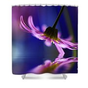A Stems Debut Shower Curtain by Kym Clarke