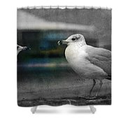 A Touch Of Blue Shower Curtain by Susanne Van Hulst