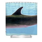 A Very Friendly Fellow Shower Curtain by Methune Hively