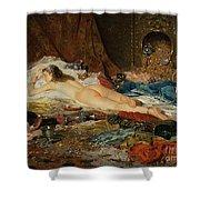 A Wealth Of Treasure Shower Curtain by Della Rocca