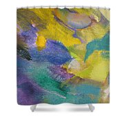 Abstract Close Up 13 Shower Curtain by Anita Burgermeister