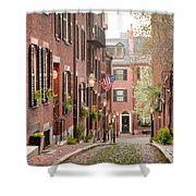 Acorn Street Shower Curtain by Susan Cole Kelly
