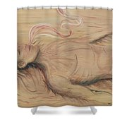 Adam And The Breath Of God Shower Curtain by Nadine Rippelmeyer