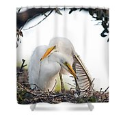 Affectionate Chicks Shower Curtain by Kenneth Albin