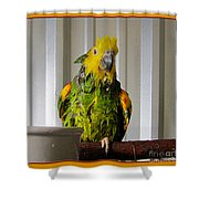 After The Bath Shower Curtain by Victoria Harrington