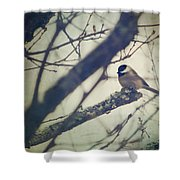 Against The Wind Shower Curtain by Amy Tyler