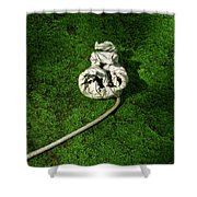 Aguished Leaf Shower Curtain by Douglas Barnett