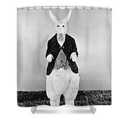 Alice In Wonderland, 1933 Shower Curtain by Granger