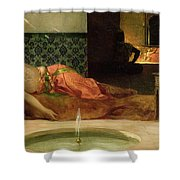 An Odalisque in a Harem Shower Curtain by Benjamin Constant