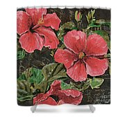 Antique Hibiscus Black 2 Shower Curtain by Debbie DeWitt