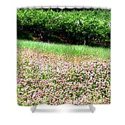 Apple Trees And Clover Shower Curtain by Will Borden