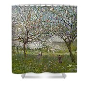 Apple Trees In Flower Shower Curtain by Ernest Quost
