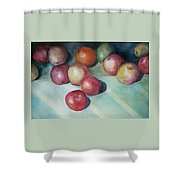 Apples And Orange Shower Curtain by Jun Jamosmos