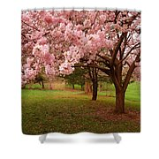 Approach Me - Holmdel Park Shower Curtain by Angie Tirado