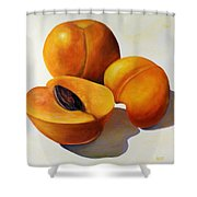 Apricots Shower Curtain by Shannon Grissom