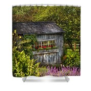 Architecture - A Summers Dream  Shower Curtain by Mike Savad