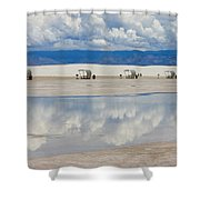 Armageddon Picnic Shower Curtain by Skip Hunt